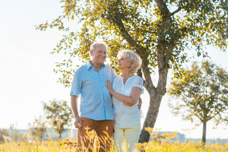 Romantic senior couple holding hands while walking together in the countryside stock photography