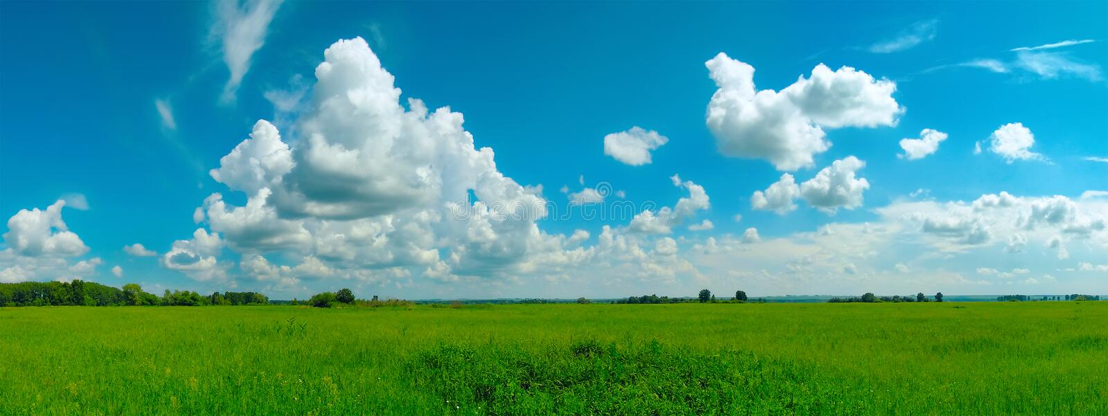 Romantic summer landscape royalty free stock images