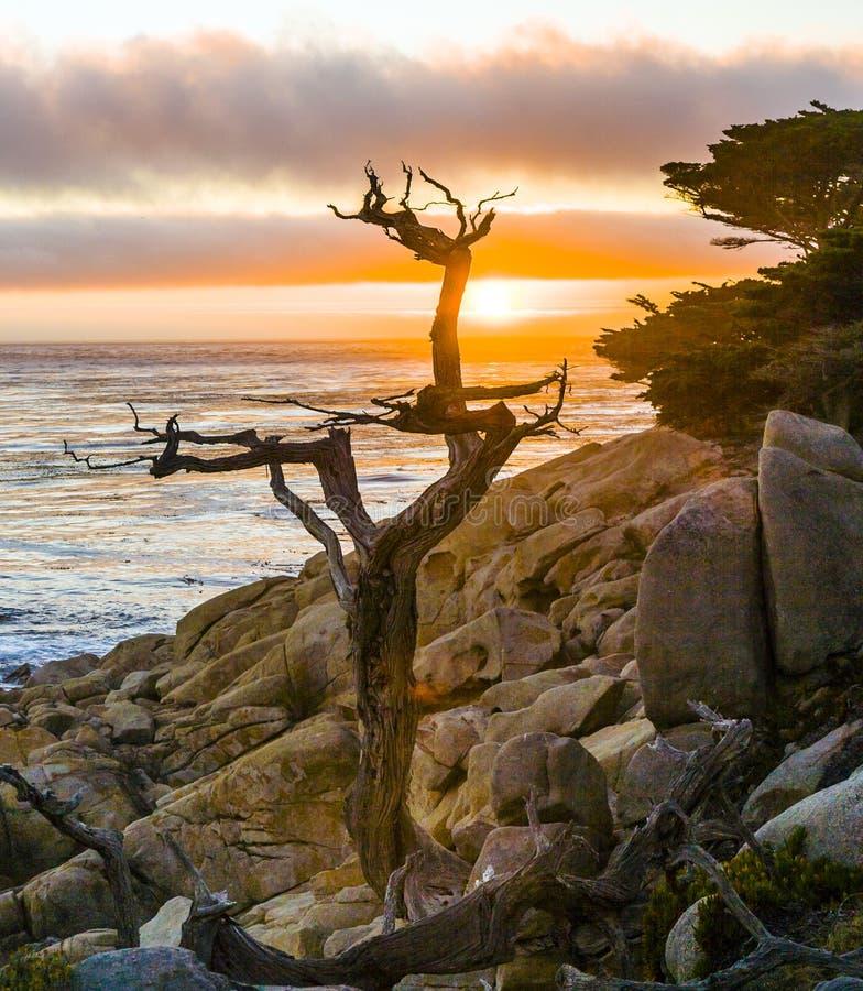 Romantic sunrise near Point Lobos stock images