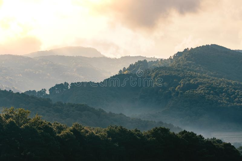 The romantic sunrise scene in a mountain valley at Doi Inthanon International park. The romantic sunrise scene in a mountain valley at Doi Inthanon stock image