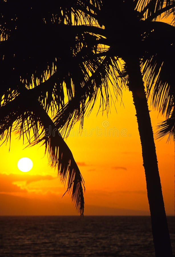 Romantic Sunset Stock Photo
