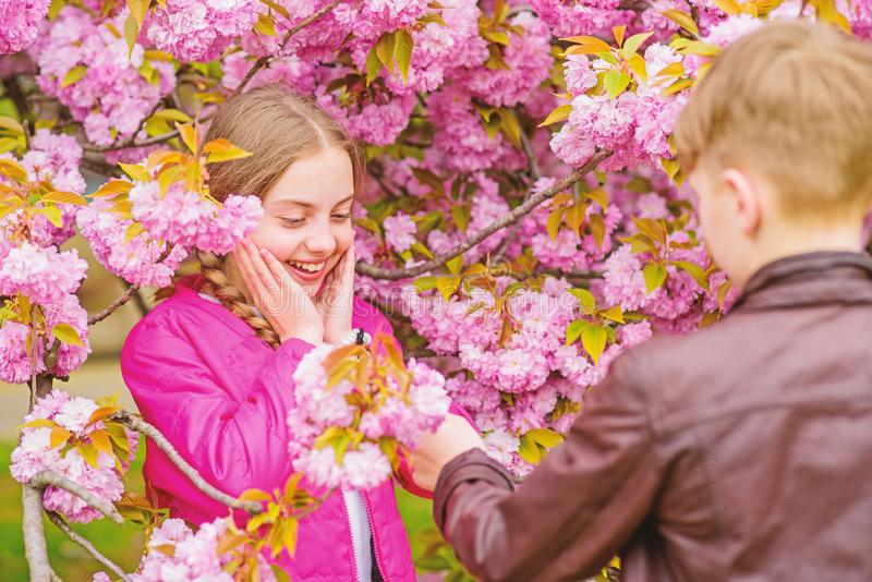 Romantic teens. Kids enjoying pink cherry blossom. Tender bloom. Couple kids on flowers of sakura tree background stock photo