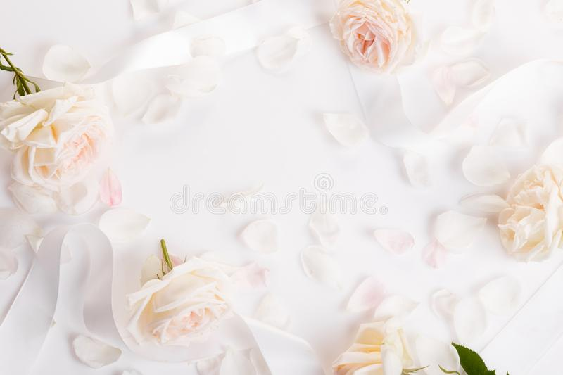 Romantic wedding background.Wedding, valentine, engagement, anniversary theme. Delicate cream, light pink roses, white ribbon and petals on white background stock photography