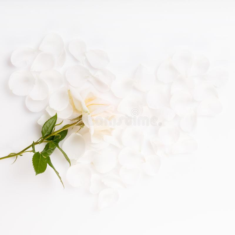 Romantic wedding background.Wedding, valentine, engagement, anniversary theme. White rose petals laid out in the shape of a heart and white rose. Romantic royalty free stock photos