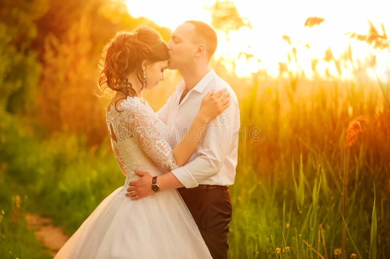 Romantic wedding couple at sunset. Close-up bride and groom in the setting sun and copy space royalty free stock photos