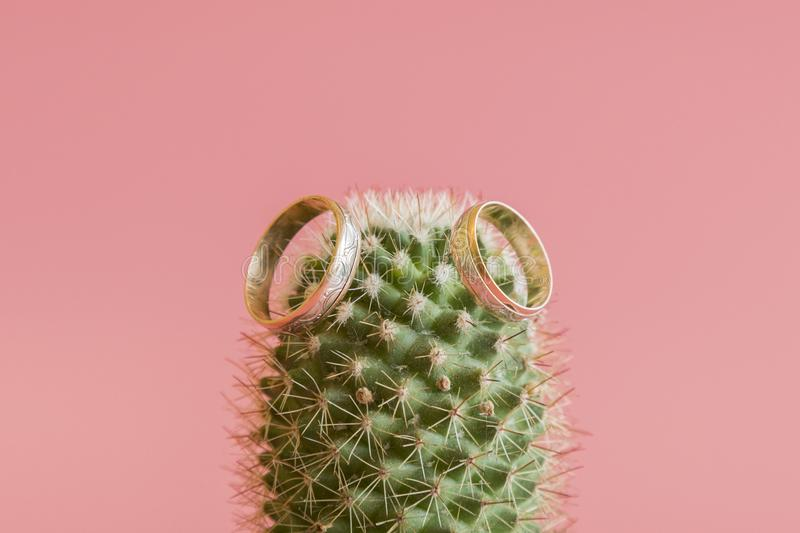 Romantic wedding ring on Cactus and pink background selective focus on Heart inside ring.Love concept. wedding ring on stock photos