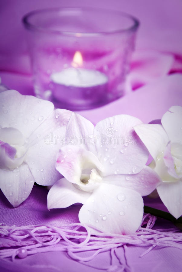 Romantic Wellness Royalty Free Stock Images