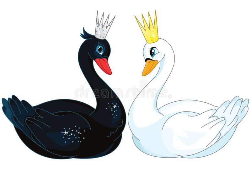 Romantic white black swans couple vector illustration