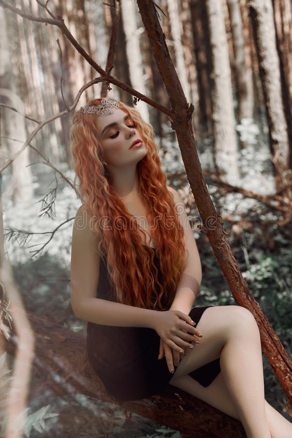 Romantic woman with red hair lying in the grass in the woods. A girl in a light black dress sleeps and dreams in a magical forest. stock image