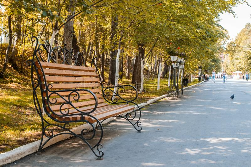 Romantic wooden bench with metal openwork armrests on shady alley in city park stock photos