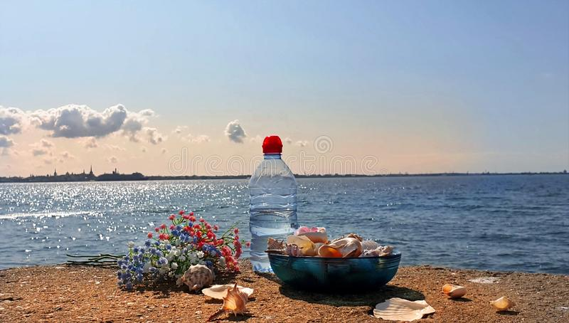 Romantic world Wild flowers fresh water in clean Baltic Sea seashell on rock i blue glass cup and bott stock photography