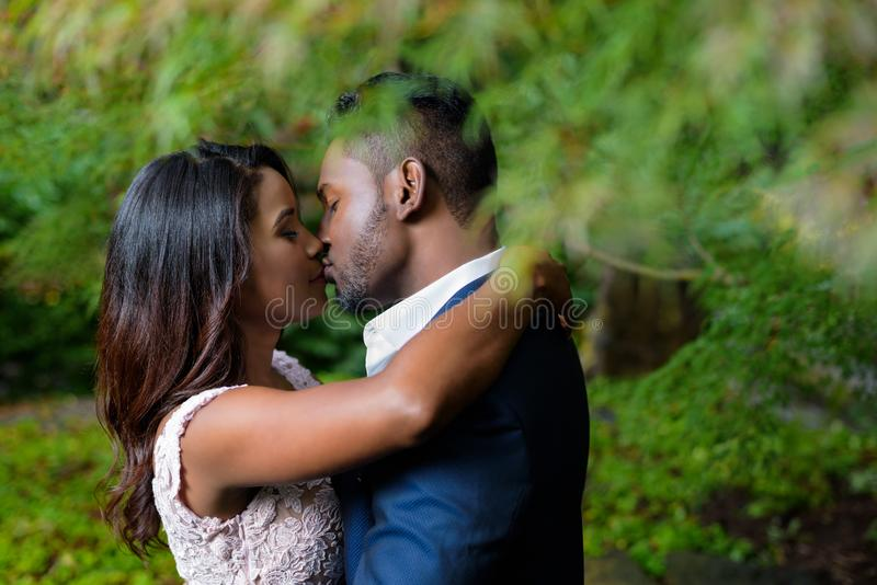 Romantic young couple kissing underneath branches in an outdoor park royalty free stock image