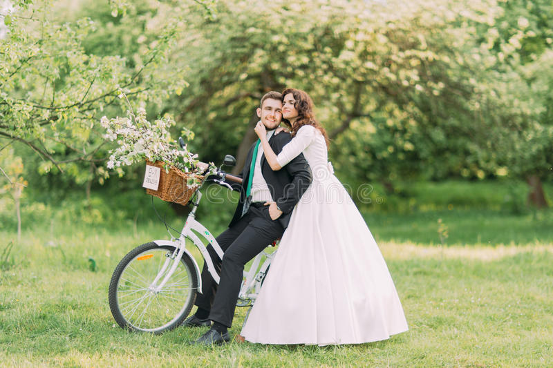 Romantic young newlyweds holding each other posing in park on bicycle with wedding decoration stock image