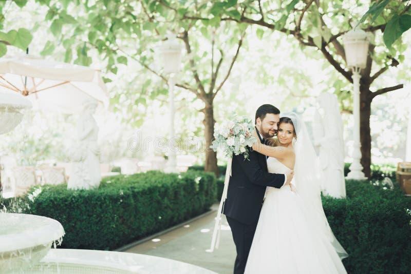 Romantico, favola, coppie felici della persona appena sposata che abbracciano e che baciano in un parco, alberi nel fondo immagini stock