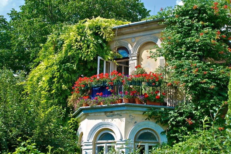 romantisch balkon stock afbeelding afbeelding bestaande uit wijnstokken 20392323. Black Bedroom Furniture Sets. Home Design Ideas