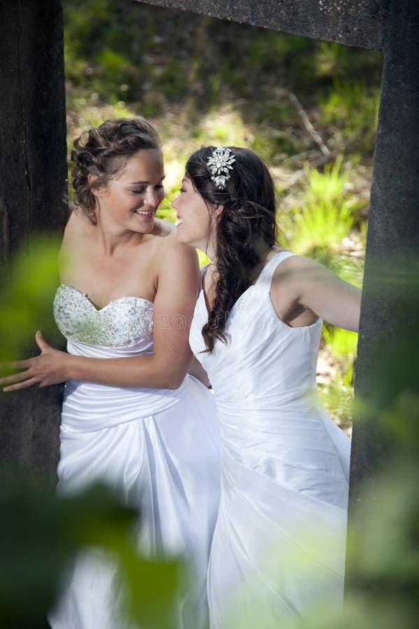 Romantisch beeld van twee bruiden in aardomgeving royalty-vrije stock fotografie