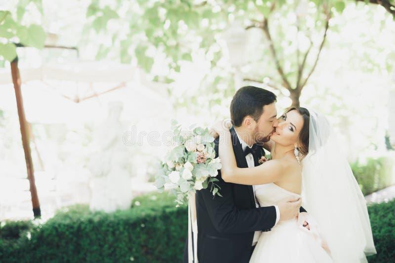 Romantisch, fairytale, gelukkig jonggehuwdepaar die en in een park, bomen op achtergrond koesteren kussen stock foto