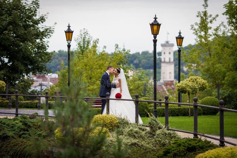 Romantisch jonggehuwdepaar, bruidegom kussende bruid in Europees park w stock afbeelding