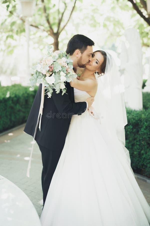 Romantisch, Märchen, glückliche Jungvermähltenpaare, die in einem Park, Bäume im Hintergrund umarmen und küssen stockfotografie