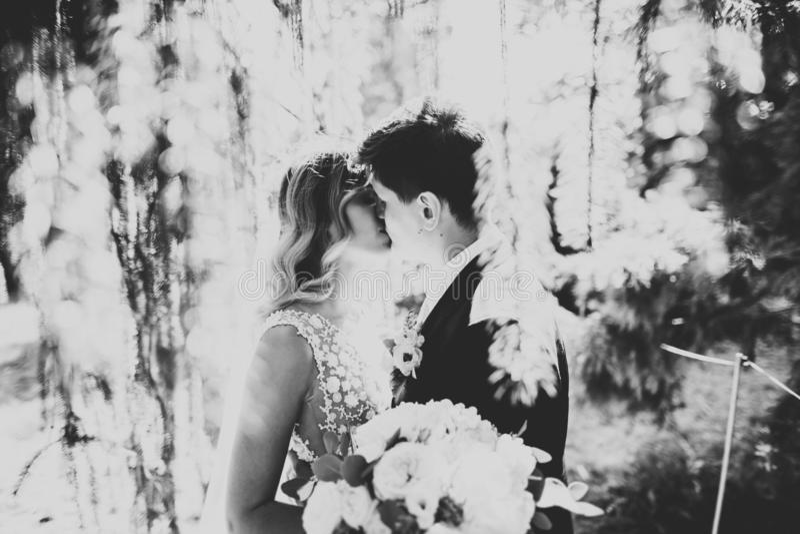 Romantisch, Märchen, glückliche Jungvermähltenpaare, die in einem Park, Bäume im Hintergrund umarmen und küssen lizenzfreies stockbild