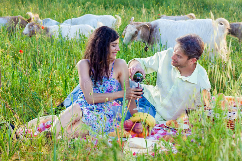 Romantisch paar die van wijn op een de zomerpicknick genieten royalty-vrije stock afbeelding