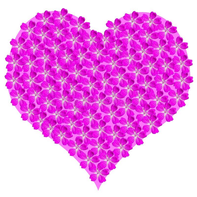 Romantisch roze hart, dat van de roze geïsoleerde hoofden van de geraniumbloem, op wit voor valentijnskaartendag of romantische v vector illustratie