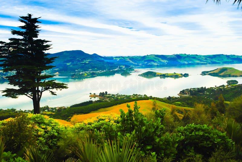 Romantische Ansicht von schönem See mit Bergen auf dem Horizont in Neuseeland lizenzfreie stockfotografie