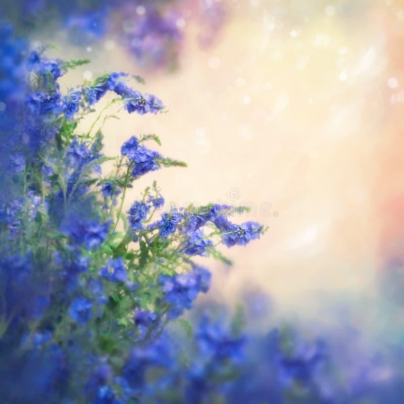 Romantische Blauwe Bloemen stock illustratie
