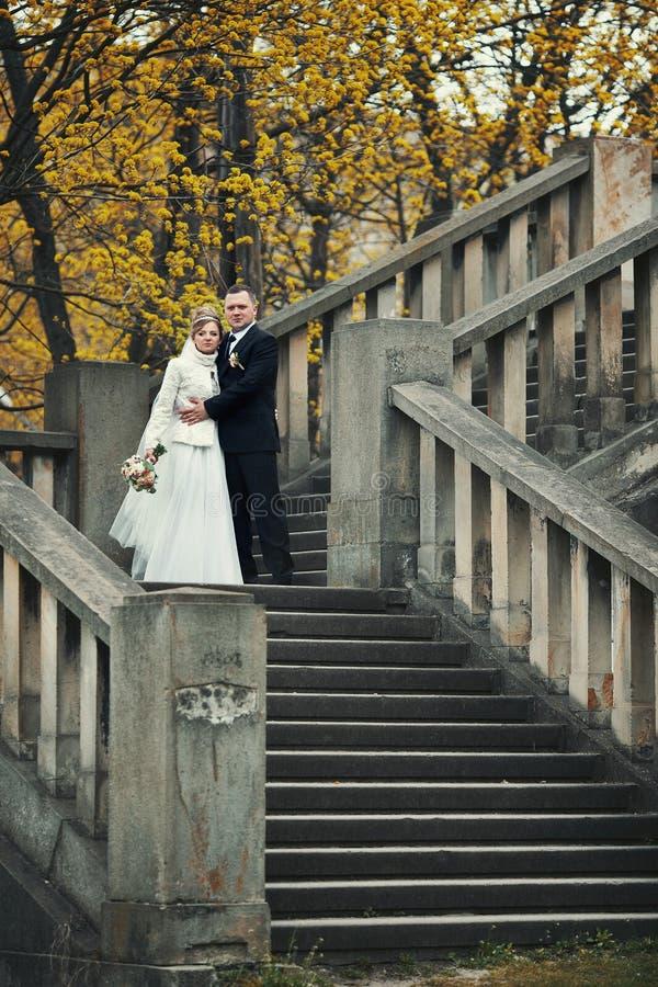 Romantische bruidegom die gelukkige bruid in laag op steentreden koesteren stock afbeelding