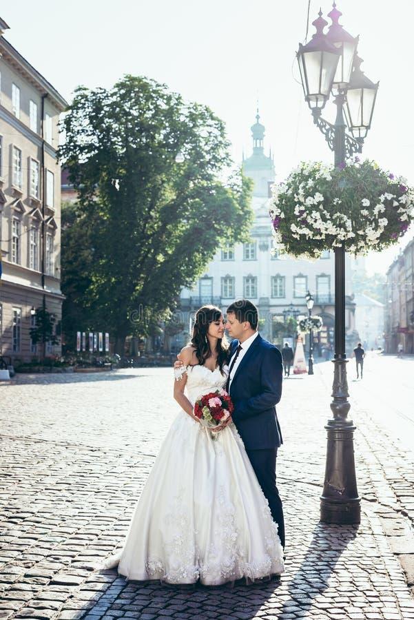 Romantische Ganzaufnahme im Freien der reizend Jungvermählten, die weich Nasen im schönen sonnigen umarmen und berühren stockbild