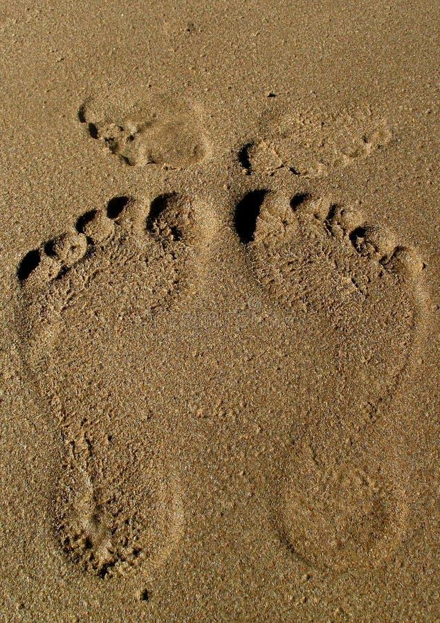 Romantische Kus op het strand stock fotografie