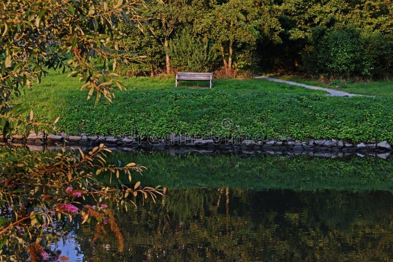Romantische Landschaft mit einer Holzbank nahe einem Fluss im Sommer stockfotografie