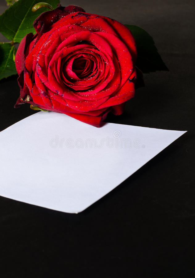 Romantische Meldung lizenzfreie stockbilder
