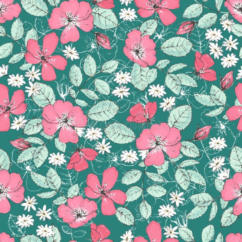 Romantische nahtlose Muster mit wilden Rosen, Weinleseart lizenzfreie abbildung