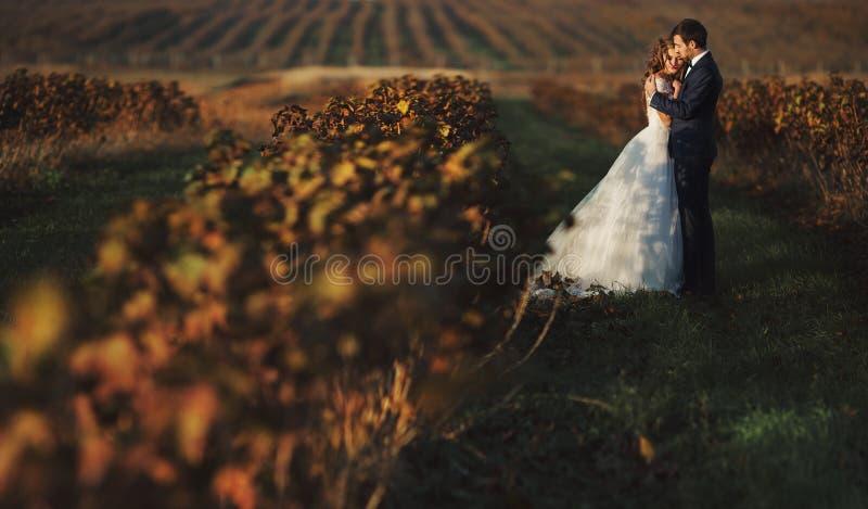 Romantische Paare der Märchen von den Jungvermählten, die bei Sonnenuntergang in der Rebe umarmen lizenzfreie stockbilder