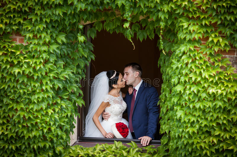 Romantische Paare des Märchenjungvermähltens von den valentynes, die in einem n küssen stockfotografie