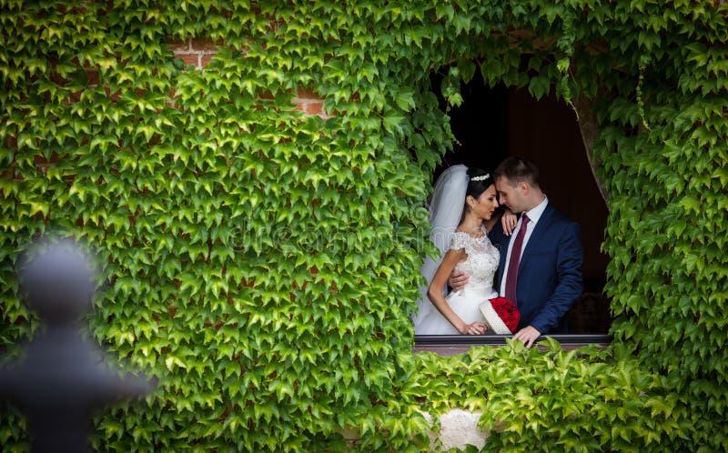 Romantische Paare des Märchenjungvermähltens von den valentynes, die in einem n O aufwerfen lizenzfreies stockfoto