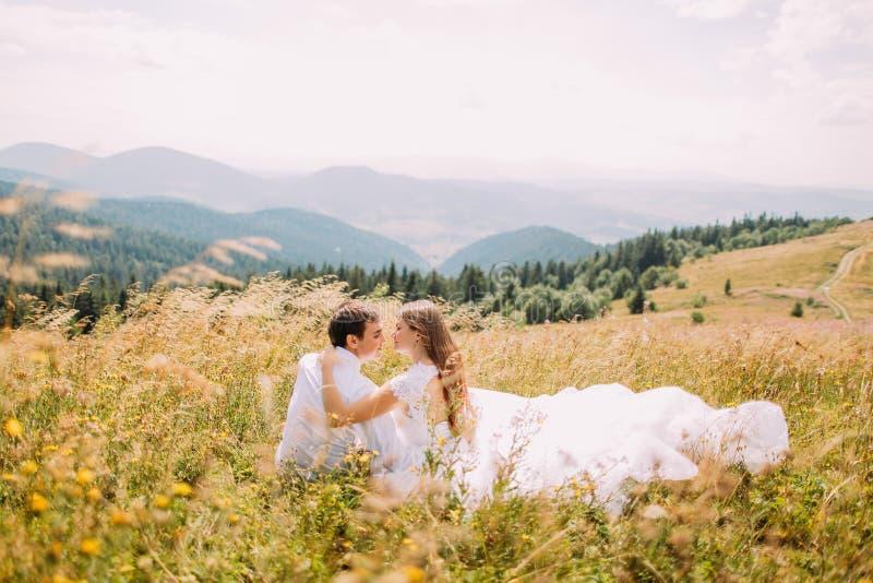 Romantische Paare, die im Gras am gelben sonnigen Feld mit Forest Hills als Hintergrund sitzen Rückseitige Ansicht lizenzfreies stockbild
