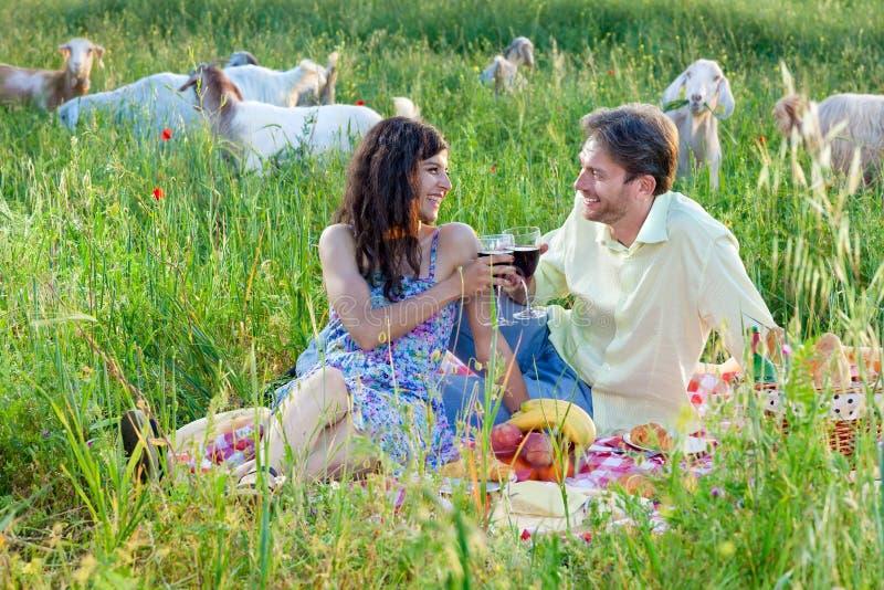 Romantische Paare, die mit einem Glas Rotwein rösten lizenzfreie stockfotos
