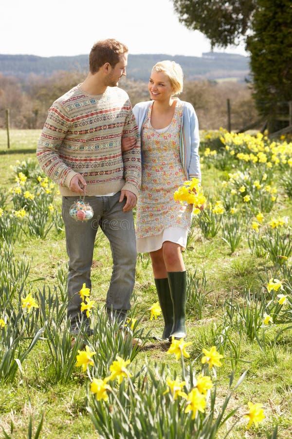 Romantische Paare, die unter Frühlings-Narzissen gehen lizenzfreie stockfotos