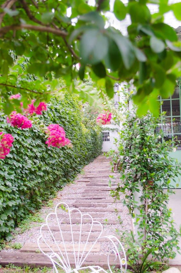 Romantische plattelandshuisjetuin met installaties royalty-vrije stock foto