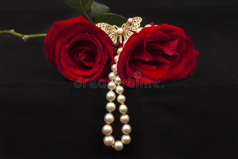 Romantische rode rozen royalty-vrije stock afbeelding
