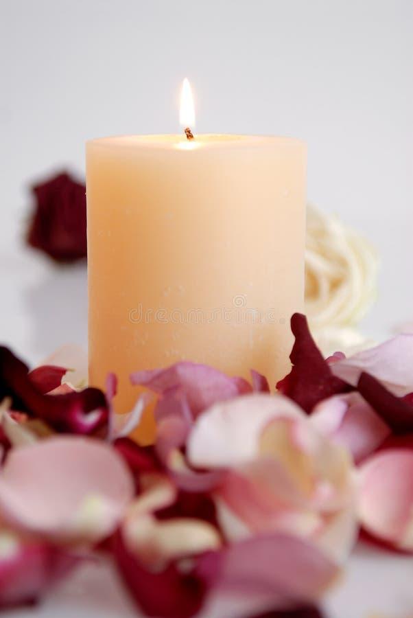Romantische schöne rosa und weiße Rosen Blumenblätter mit Kerze stockbild