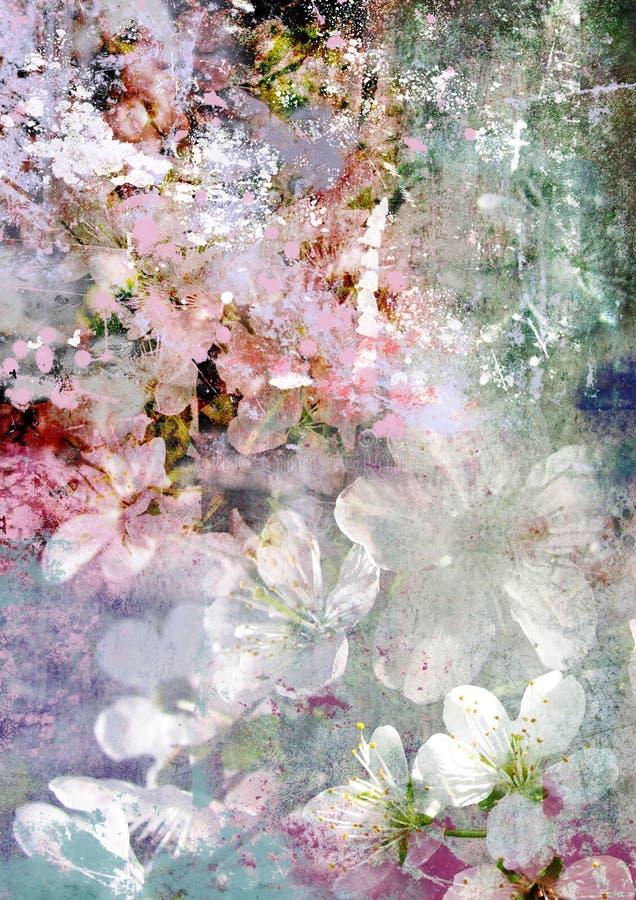 Romantische tedere kersenbloem en vuile achtergrond royalty-vrije stock foto