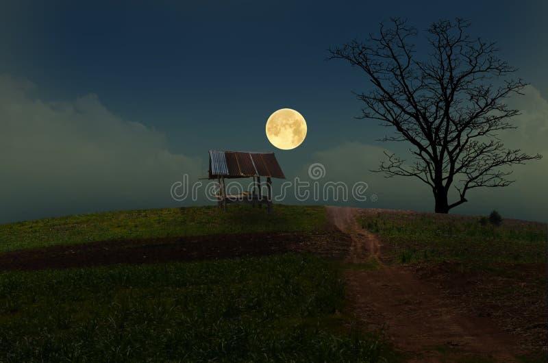 Romantische volle maan en eenzame hut stock afbeeldingen