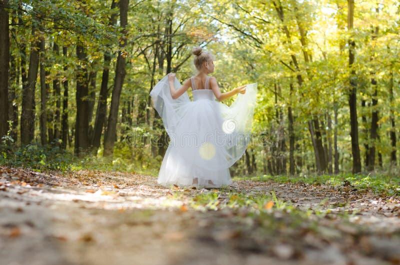 Romantische Waldfee lizenzfreie stockfotos