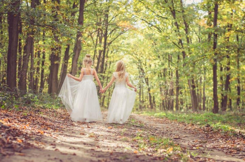 Romantische Waldfeen stockfotos