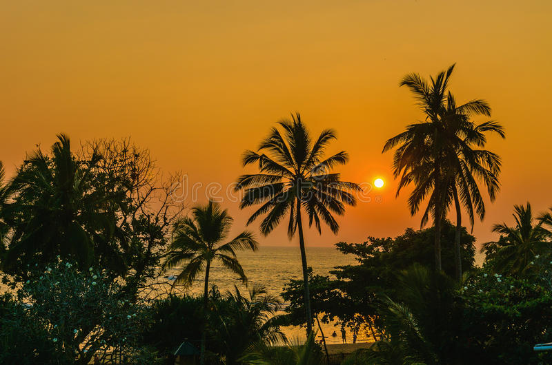 Romantische zonsondergang op Caraïbisch strand met palmen royalty-vrije stock fotografie