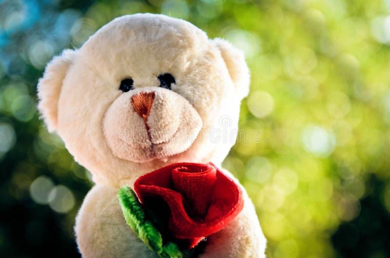 Romantischer Bär stockbilder