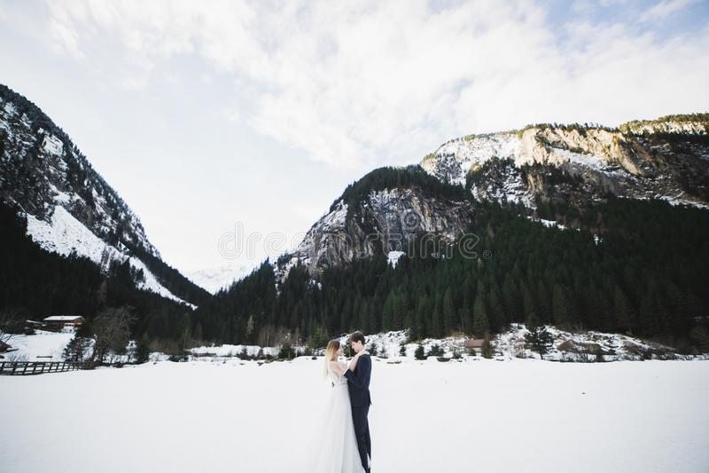 Romantischer Heiratsmoment, Paar von Jungverm?hlten l?chelndes Portr?t-, Braut- und Br?utigamumarmen lizenzfreie stockfotos
